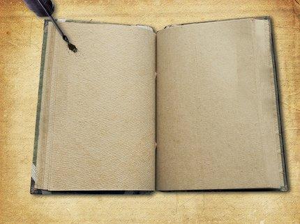 Blank Book page